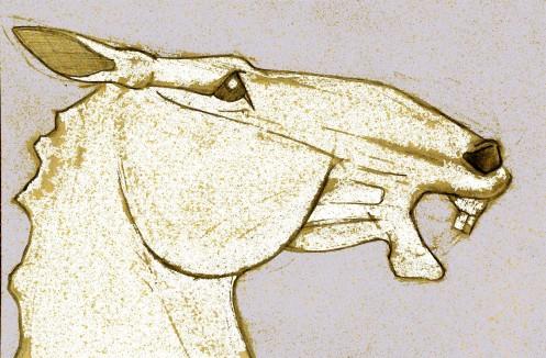 a horse head 5