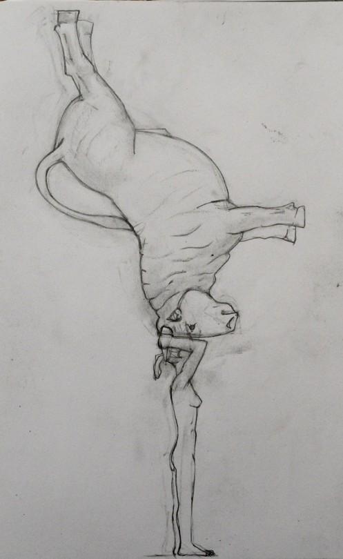 bull leap