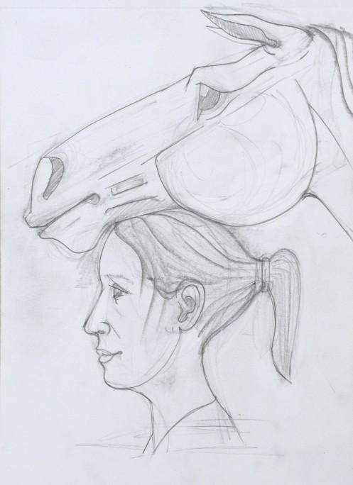 a horse head13